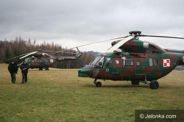 Region Jeleniogórski: Sokoły przyleciały na pomoc