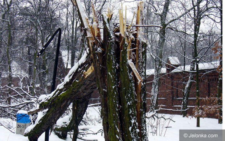 Region Jeleniogórski: Wichura zaszalała i przywiała zimę