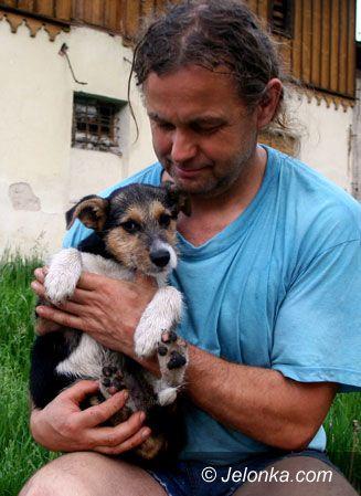 Region Jeleniogórski: Suczka skazana na śmierć głodową