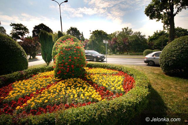 JELENIA GÓRA: Zemsta na kwiatkach po remisie w Wiedniu