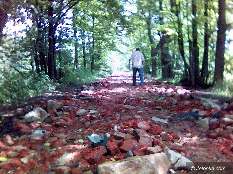 Region Jeleniogórski: Dorośli wandale