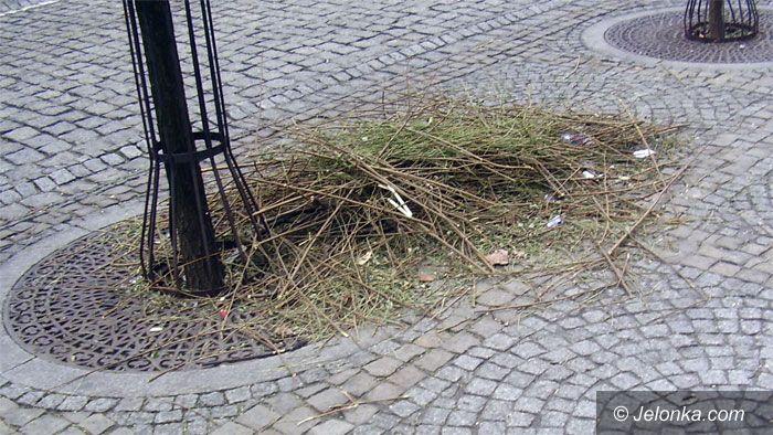 JELENIA GÓRA: Odcięli gałęzie i… zostawili