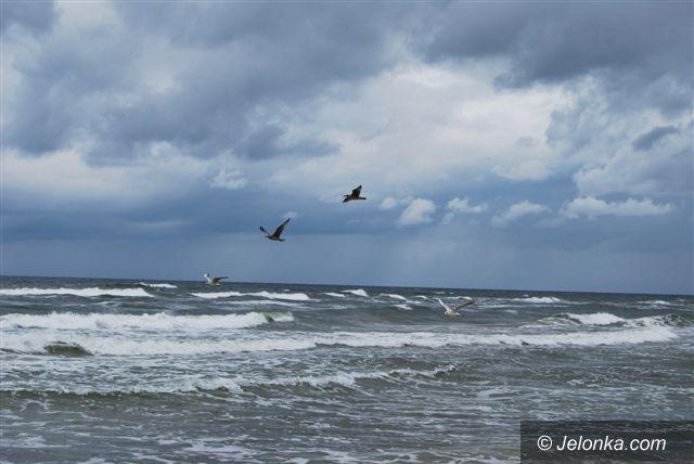 Pogorzelica: Karatecy trenowali nad morzem