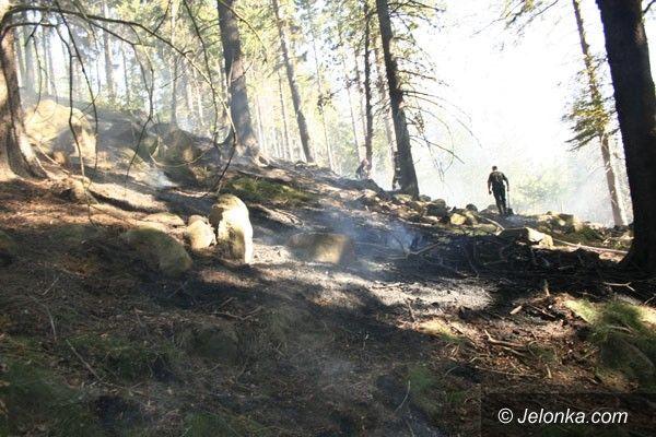 REGION: Płonął las w Karpnikach