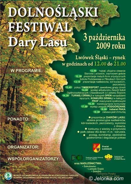 Jelenia Góra: Dary Lasu w Lwówku Śląskim