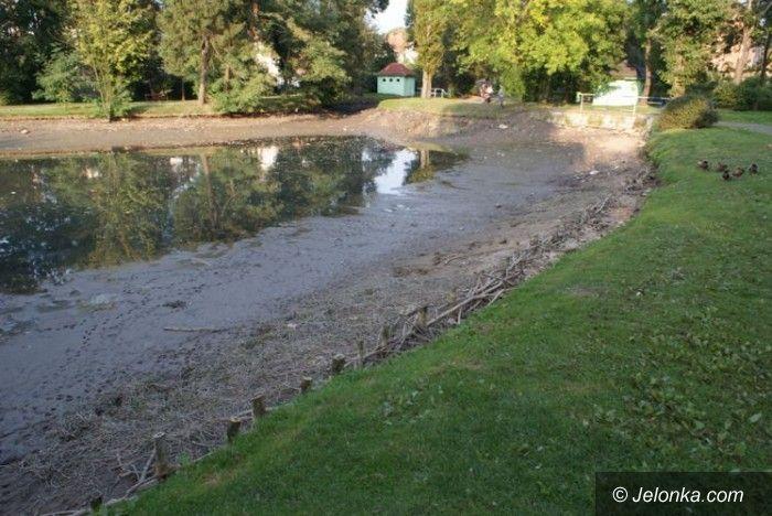LWÓWEK ŚL.: Nowe oblicze parku w grodzie lwa