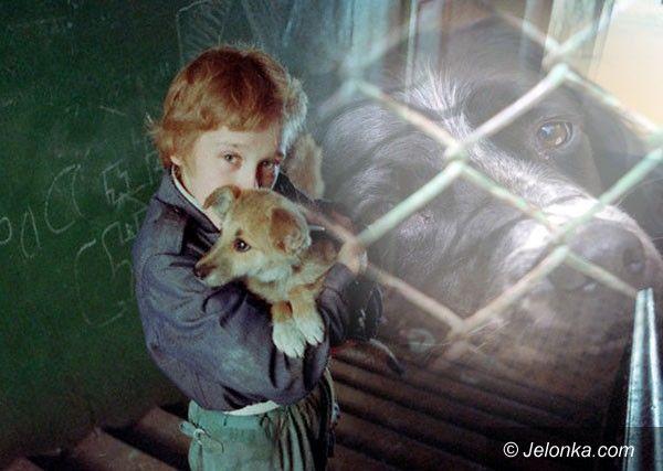 JELENIA GÓRA: Z psem na śmietnik