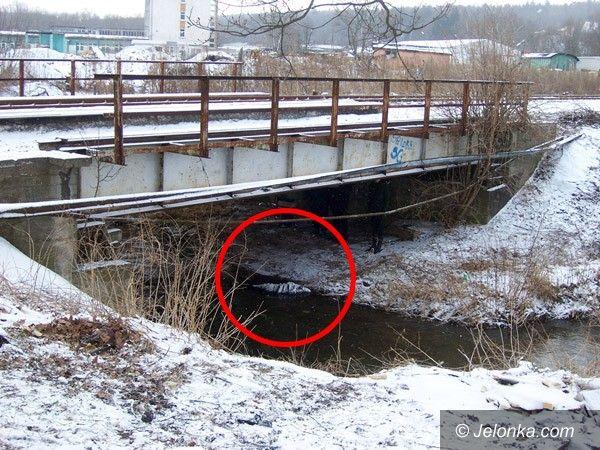 LWÓWEK ŚLĄSKI: Zwłoki w rzece