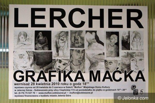 JELENIA GÓRA: Lercher w Muflonie