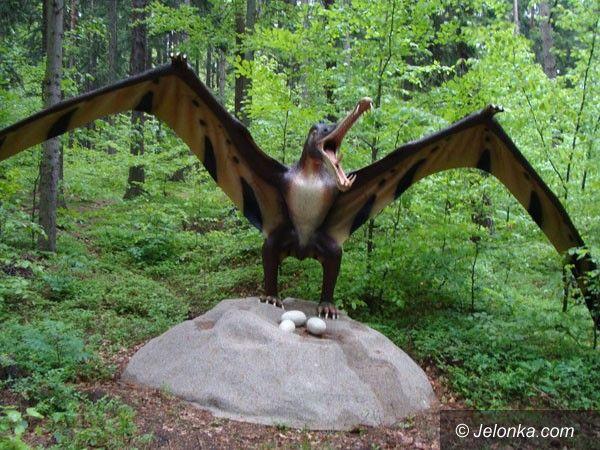 SZKLARSKA PORĘBA: Park Dinozaurów? Cierpliwości!