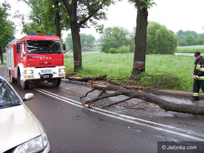 REGION: Pnie i gałęzie zatamowały nurt Bobru