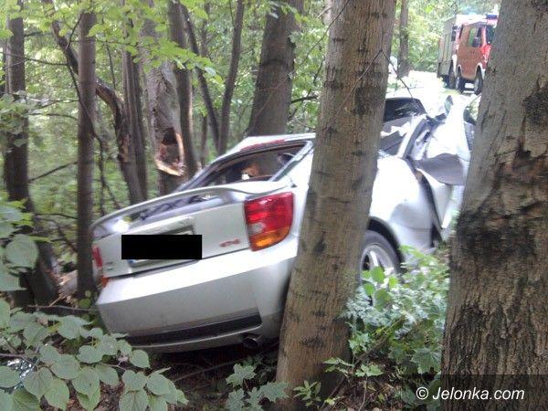 KOWARY: Po pijanemu uderzył autem w drzewo