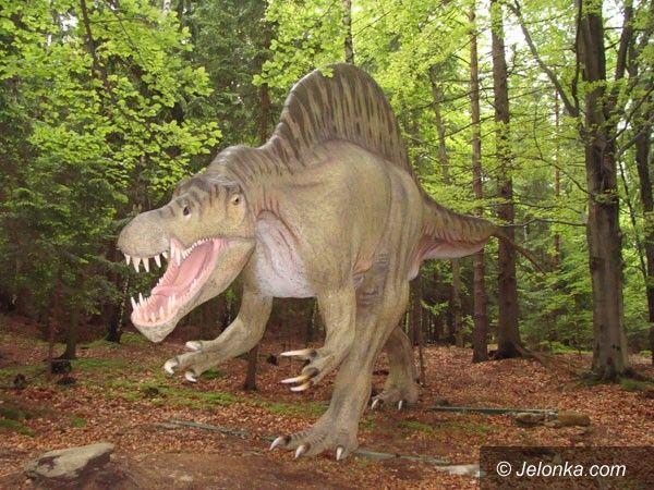 SZKLARSKA PORĘBA: Dinozaury atrakcją pod Szrenicą