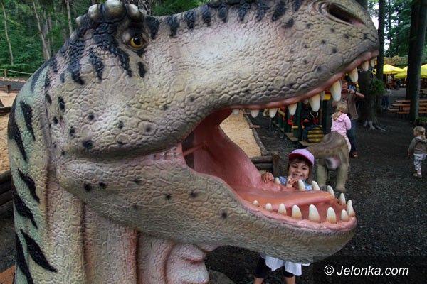 SZKLARSKA PORĘBA: Oko w oko z dinozaurem i mamutem