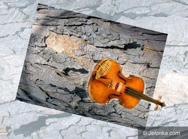 REGION: Fortuna za kubik drewna. Na skrzypce