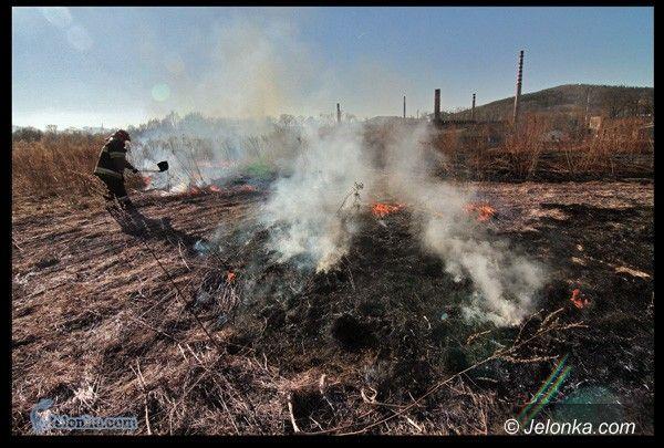 JELENIA GÓRA: Płoną łąki, pola, ugory. Bez litości dla podpalaczy