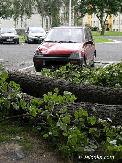 Jelenia Góra: Drzewo spadło na trzy samochody