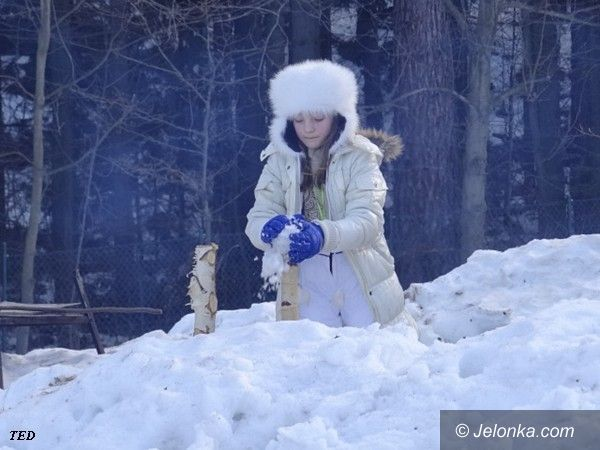 JELENIA GÓRA: Na rakietach śnieżnych tropami Karkonosza
