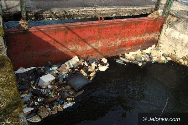 REGION JELENIOGÓRSKI: Czyszczą brzegi Bobru w Janowicach Wielkich