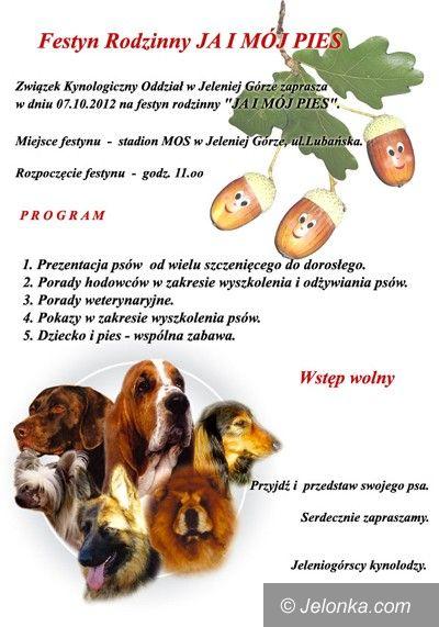 Jelenia Góra-Cieplice: Do serca przytul psa – festyn z pupilami w Cieplicach
