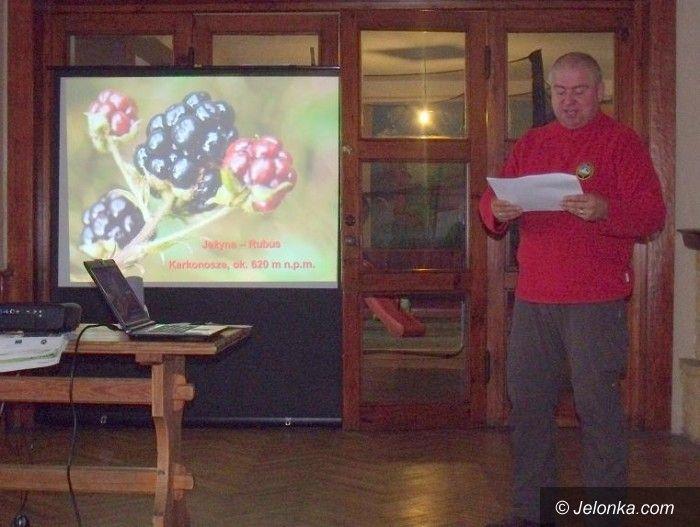Region: Polsko– czeskie spotkanie turystyczne na Przełęczy Karkonoskiej