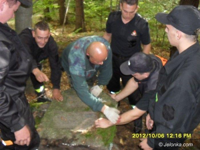 Region: Memento uporządkowało zapomnianą nekropolię w Piechowicach