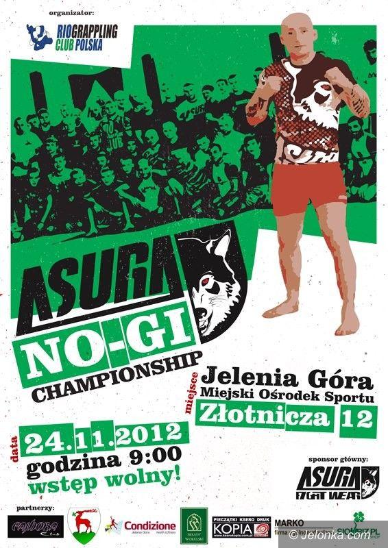 Jelenia Góra: Asura NO–Gi Championship w listopadzie