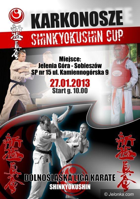 Jelenia Góra: Karkonosze Shinkyokushin Cup 2013