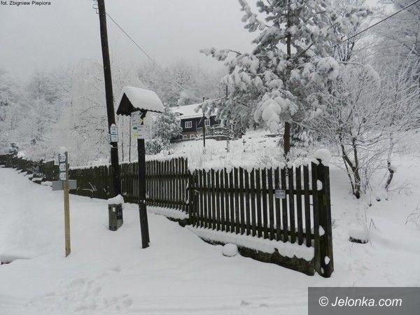 Region: Powstały projekty szlaków do Budnik. To będą piękne trasy turystyczne