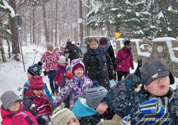 Region: Przedszkolaki dokarmiały leśne zwierzęta i szukały ich tropów