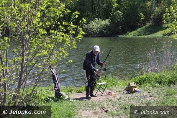 Jelenia Góra: Śnięte i chore ryby w tzw. Balatonie w Staniszowie