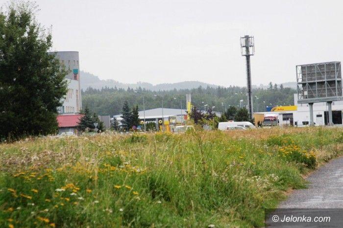 Jelenia Góra: Kiedy wykoszą plac na Zabobrzu?