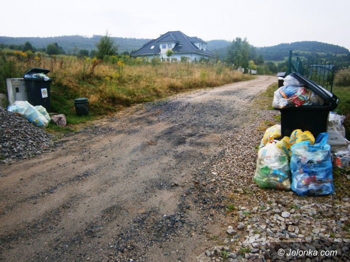 Dziwiszów: Od czterech tygodni nie wywożą śmieci!