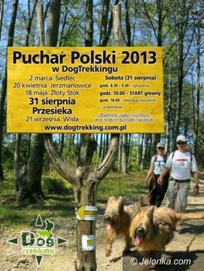 Region: Puchar Polski w Dogtrekkingu w Przesiece