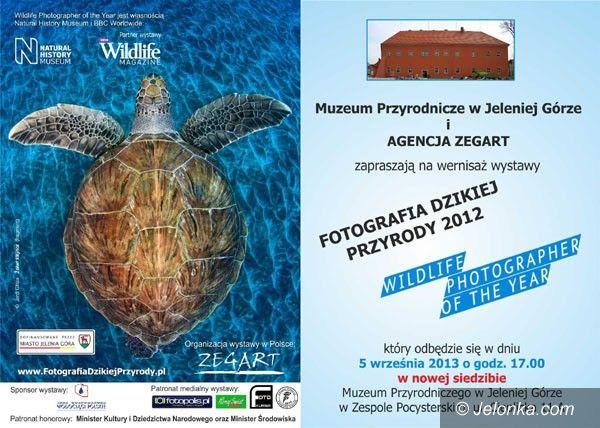 Jelenia Góra: Unikalne zdjęcia natury w Muzeum Przyrodniczym