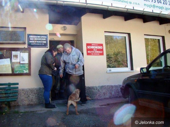 Jelenia Góra: Obdarowali zwierzaki ze schroniska