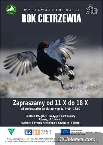 """Region: Wystawa fotograficzna """"Rok cietrzewia"""" w Kowarach"""