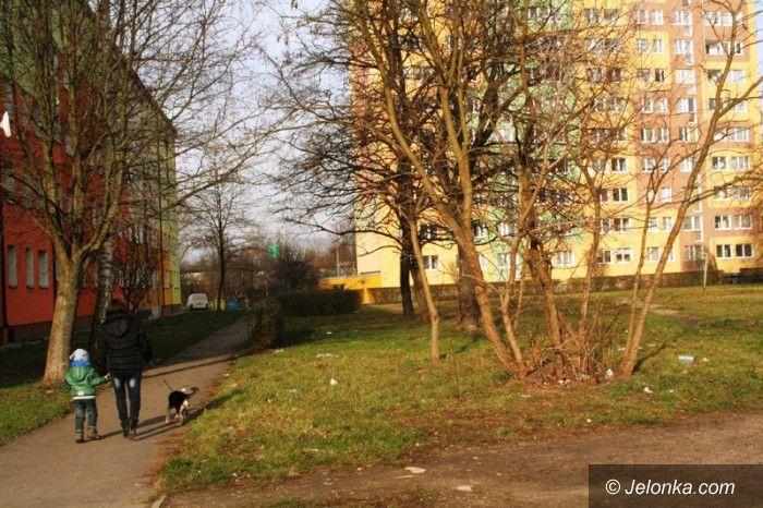 Jelenia Góra: Mieszkańcy: Od dwóch miesięcy żyjemy wśród śmieci