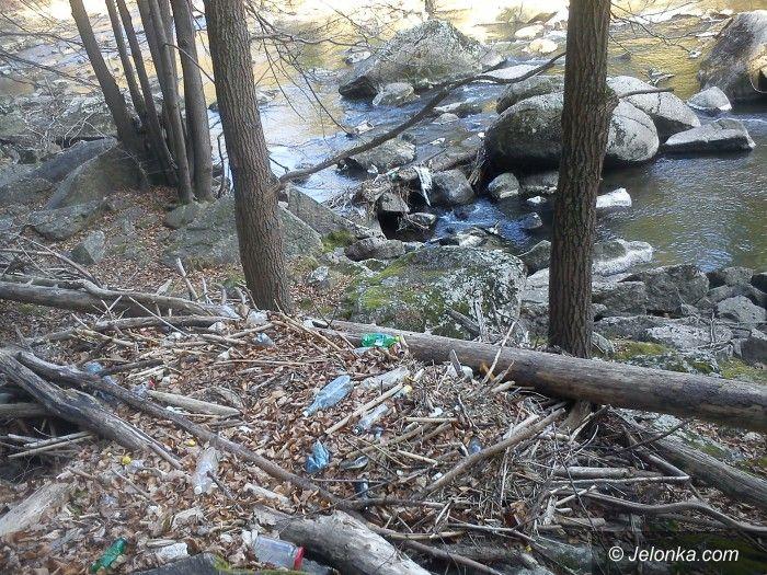 Jelenia Góra: Trasa na Perłę Zachodu tonie w śmieciach!