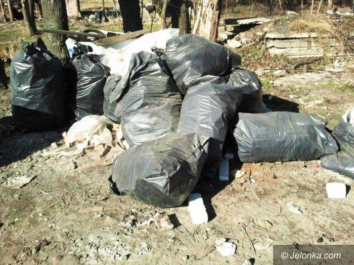 Jelenia Góra: Jeleniogórzanin wyrzucił worki z odpadami do rzeki