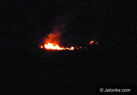 Region: Pożary w lasach i płonące trawy