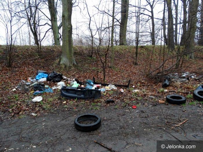 Region: Czytelniczka: to trzeba posprzątać