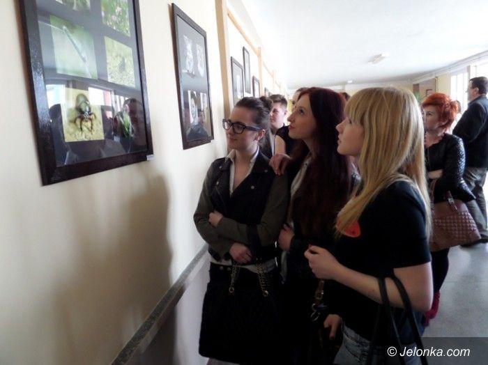 Jelenia Góra: Galeria i nowa biblioteka w Śniadeckim