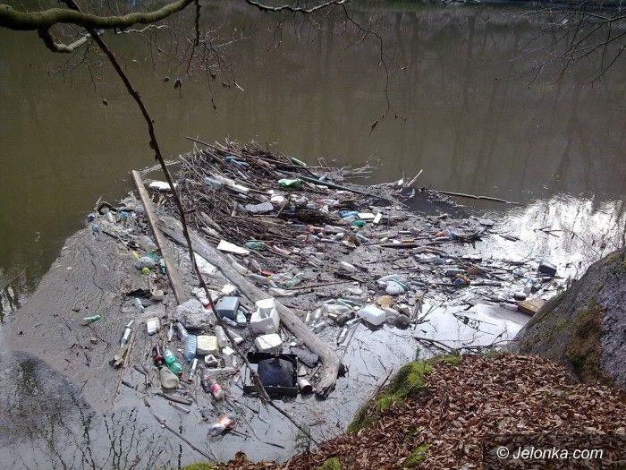 Jelenia Góra: Czy ktoś w końcu to posprząta?