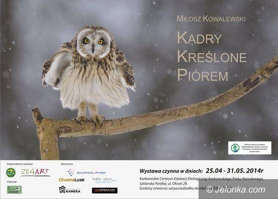 """Region: Wystawa fotografii """"Kadry kreślone piórem"""" Miłosza Kowalewskiego"""