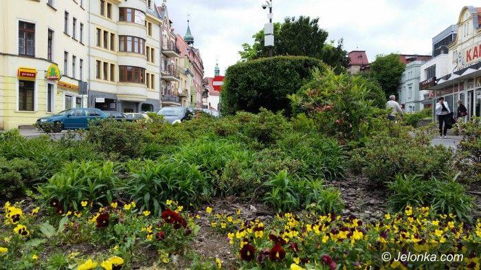 Jelenia Góra: Jelenia Góra miastem 15 tysięcy kwiatów