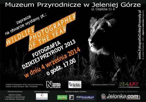 """Jelenia Góra: Wernisaż wystawy """"Fotografia dzikiej przyrody 2013"""""""