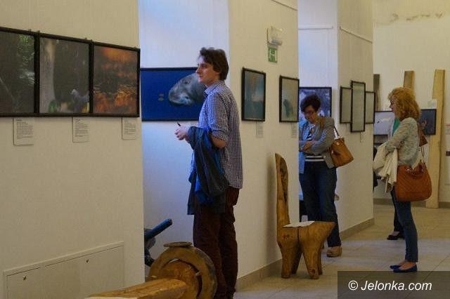Jelenia Góra: Dziko w Muzeum Przyrodniczym
