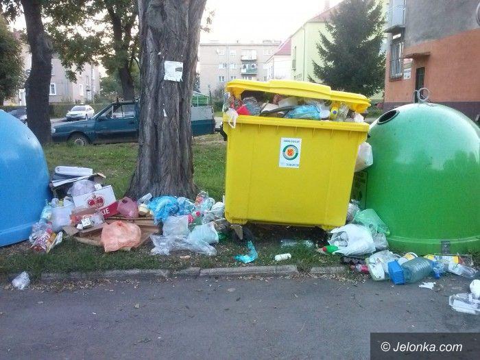 Jelenia Góra: Czytelnik: Kto i kiedy to posprząta?