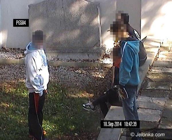 Jelenia Góra: Palili marihuanę w parku – dostrzegła ich kamera